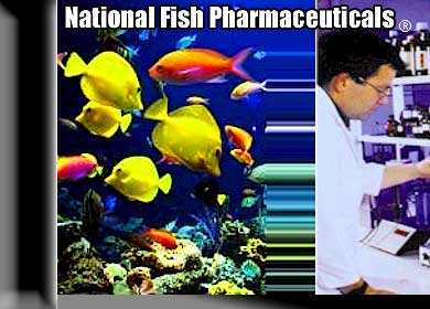 National Fish Pharmaceuticals, Fish Medications - Fish Disease Treatments And Complete Healthcare for Aquarium & Koi Pond Owners Since 1971